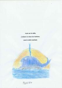 haikus-flavien